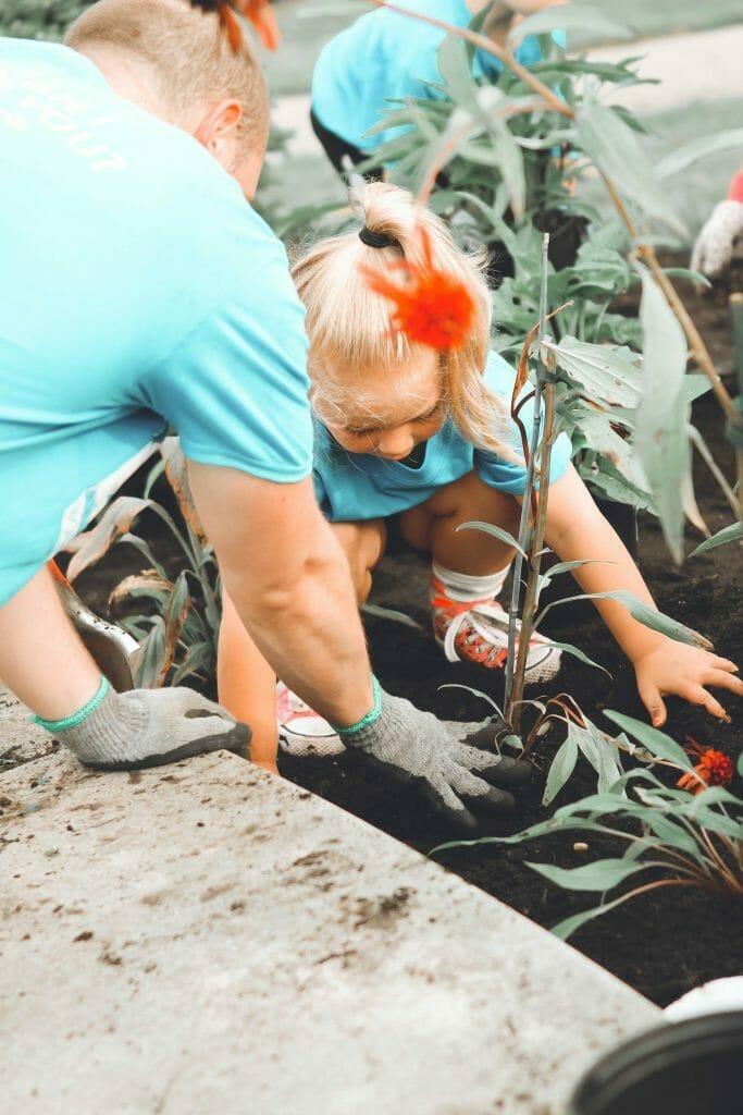 gardening-when-bored