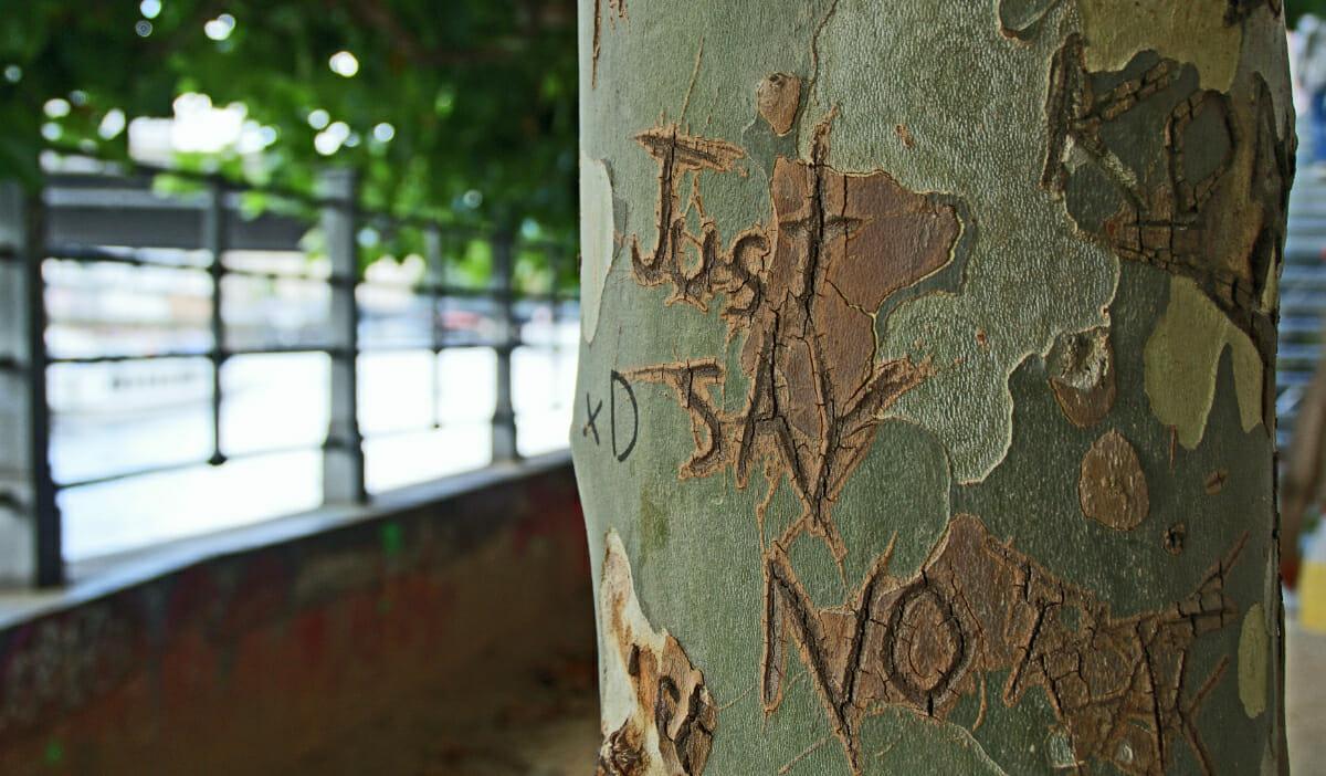 How to Say No Politely: 15 Gentle Ways of Saying No via @allamericanatlas